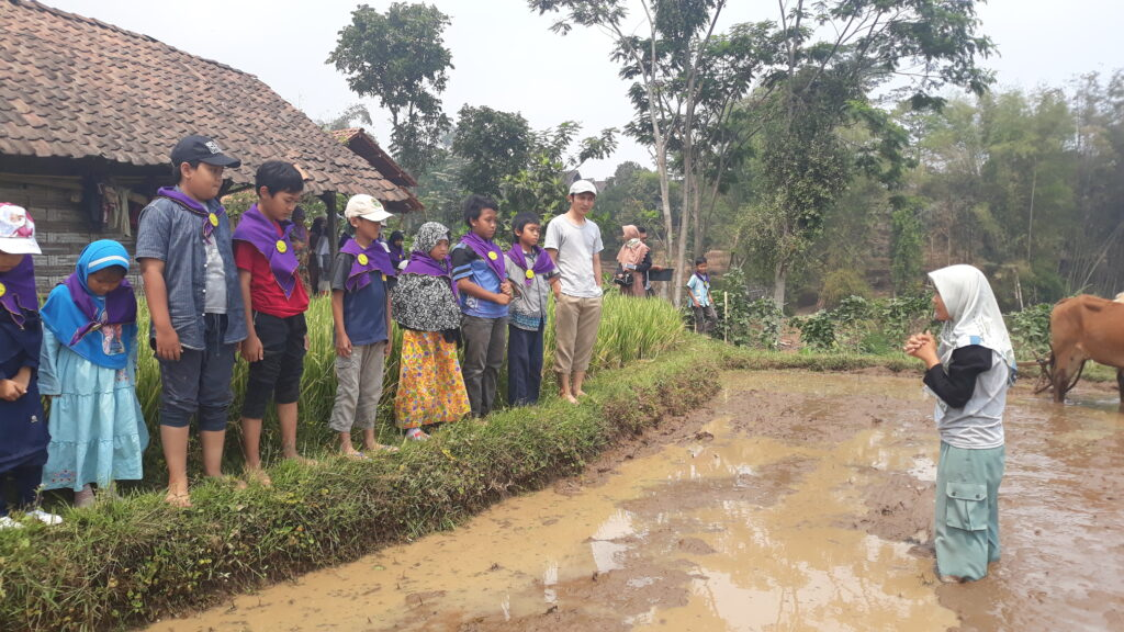 Rafforzare le donne grazie all'agroecologia - Brenjônk 2